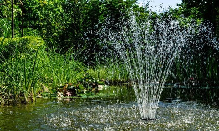 solar-pumps-for-ponds